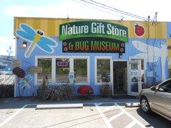 Bremerton Bug Museum