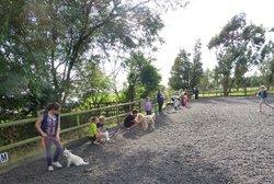 Willow Farm Holidays