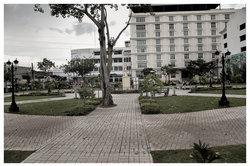 Senior Citizens Park