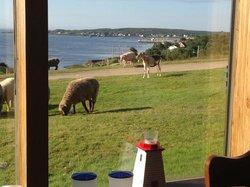 Brier Island Lodge Restaurant