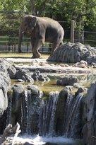 Denver Zoo