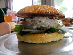 Ground Up Burgers
