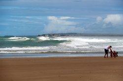 Frances Beach