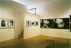 Foam - Photography Museum Amsterdam