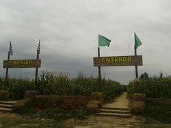 Laberint Sant Pere Pescador