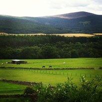 Belwade Farm