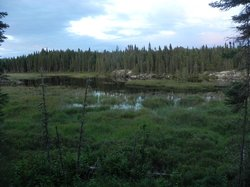 Chapleau Crown Game Preserve