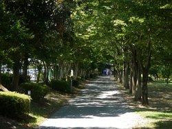 富山市ファミリーパーク