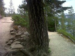Cleetwood Cove Trail