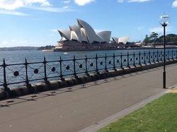 Just Sydney Tours