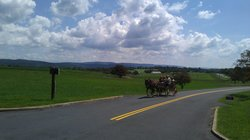 Bonnymeed Farm - Antietam Horse & Carriage Guided Tours