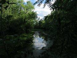 Parc-nature du Bois-de-Liesse