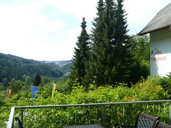 View from Berghotel Tannenhof