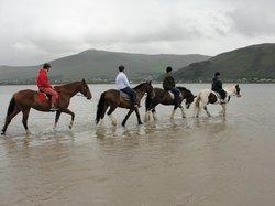 Burke's Horse Trekking Centre-Horse Riding Treks