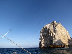 Pelican Rock