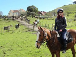 Horse Riding Warkworth