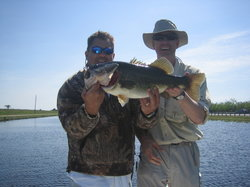 Florida Everglades Bass Fishing Charters