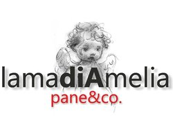 La Madia di Amelia