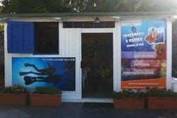 Scuba Diving School