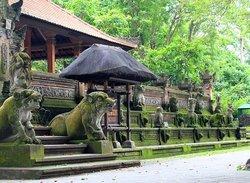 Bali Sidhi Tour - Day Tours