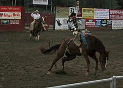 Yellowstone Rodeo
