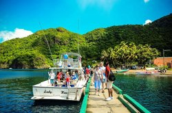 Barefoot Holidays Saint Lucia Day Tours
