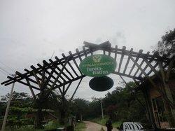 Estação Ecológica de jureia-itatins