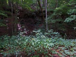 Coal Creek Motor Discovery Trail