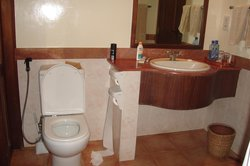 bathroom, glass wall and patio door were next to toilet