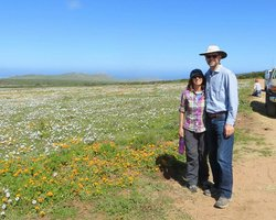 Personal Cape Town Tours Day Tours