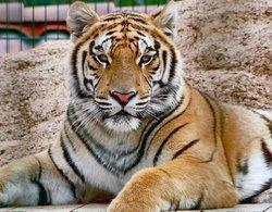 Zoo Des Trois Valles