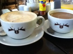 Moose Coffee and Cappuccino