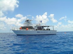 Adrenalin Snorkel Dive