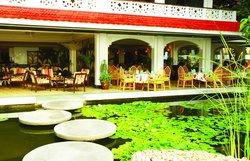 Minazi Restaurant