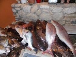 Trizoni Fish Restaurant