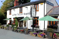 The Tilley Raven