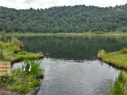 khecheopalri lake peaceful and serene holy lake