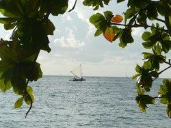 Island Sails Kaua'i