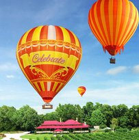 Hot Air Balloon Brisbane & Canungra Vineyards