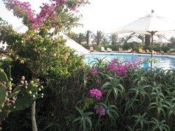 Hotel Ta´ Cenc, Gozo, pool