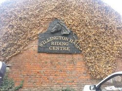 Willington Hall Riding STABLES AND LIVERY