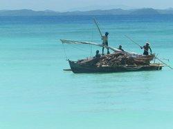 malgasci