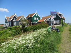 Wheely Dutch Bike Tours - Day Tours