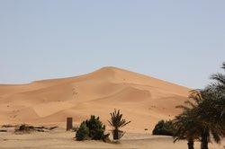 Sahara Gallery Rissani