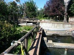 Azienda Agrituristica Aquarium