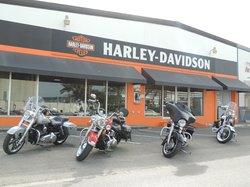 Harley Davidson Aruba Tours