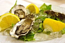 Oyster!!!
