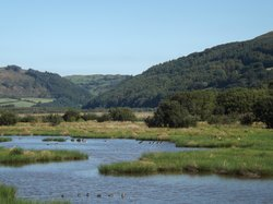 Ynys Hir Wildlife Reserve