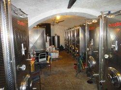 Family Winery Vinik