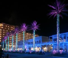 Wharf condos in back with laser light show palm trees